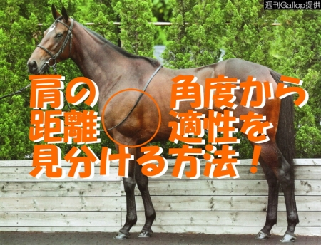 Photo_20191012222501